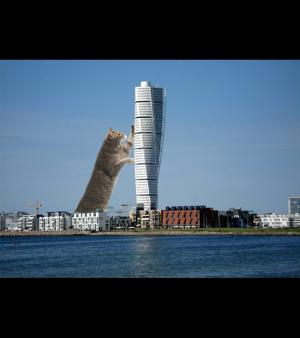 Architectural LOLCATS, photo N�2